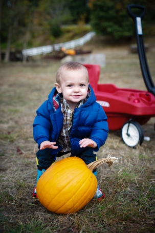 pumpkinpatch14