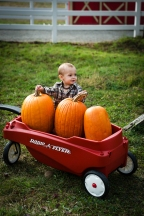 pumpkinpatch42